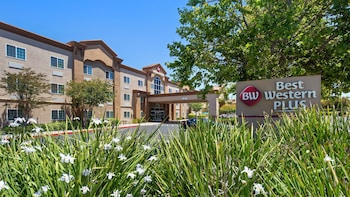 Hotel - Best Western Plus Vineyard Inn