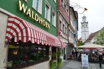 Hotel - Hotel Waldhorn