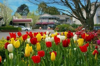 Hotel - Nesuto Leura Gardens