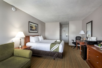 Executive Room, Non Smoking, Refrigerator & Microwave