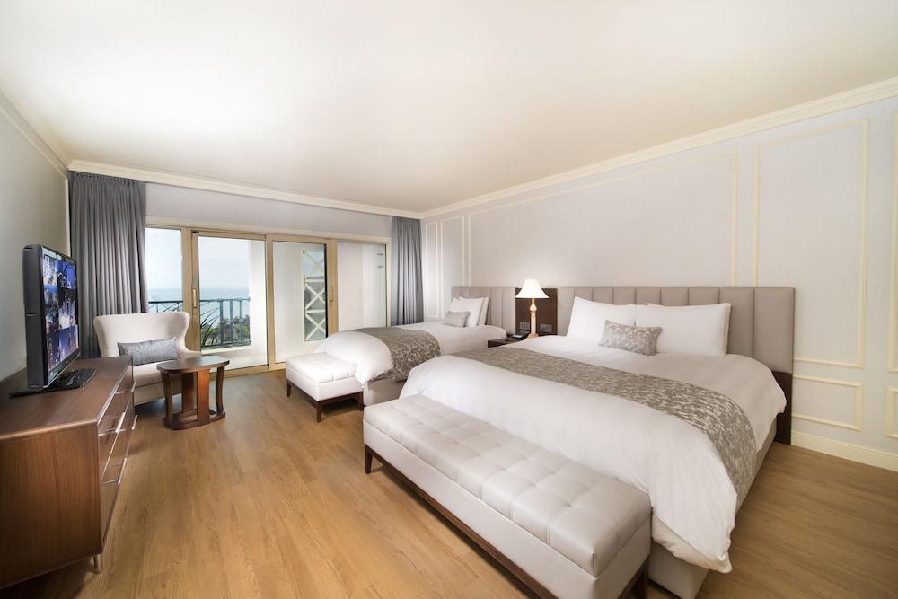 롯데 호텔 제주