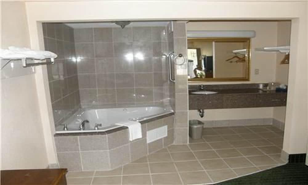 페어브리지 인 & 스위트 맥도노프, 조지아(FairBridge Inn & Suites McDonough,GA) Hotel Image 11 - Bathroom