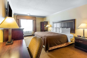 Accessible Room, 1 King Bed, Roll-In Shower, Non Smoking