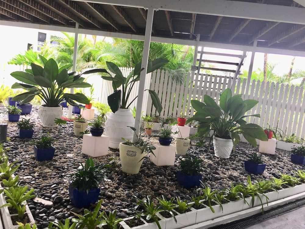 케언스 뉴 살롱(Cairns New Chalon) Hotel Image 60 - Garden