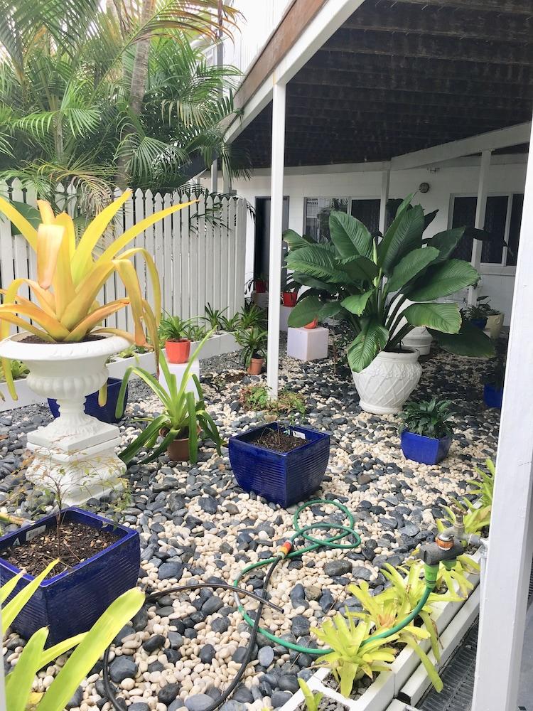 케언스 뉴 살롱(Cairns New Chalon) Hotel Image 62 - Garden