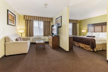 Suite, 1 King Bed with Sofa bed, Non Smoking, Refrigerator & Microwave (with Sofabed)