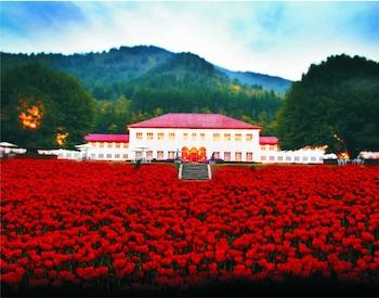 Hotel - The Lalit Grand Palace Srinagar