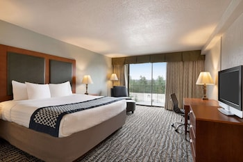 Standard Room, 1 King Bed, Non Smoking (City View)