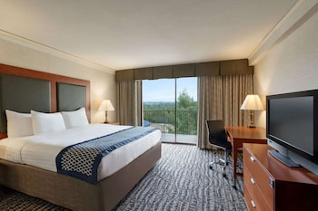 Standard Room, 1 King Bed, Accessible, City View (Mobility)
