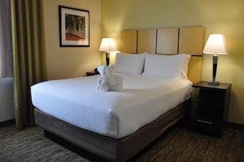 Suite, 1 Bedroom, Non Smoking (1 Queen bed & 1 Sofa bed)