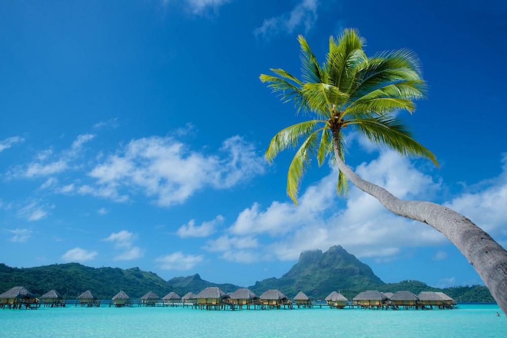 https://i.travelapi.com/hotels/1000000/560000/558800/558749/cd3078a1_z.jpg