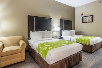 Hotel - Econo Lodge Opelika