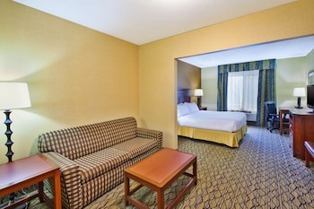 Suite, 1 King Bed with Sofa bed, Non Smoking (Mini)