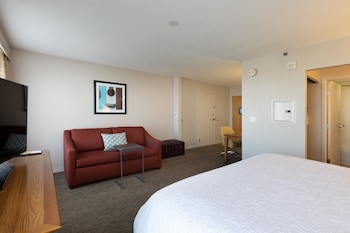 Suite, One King and One Sofa Bed