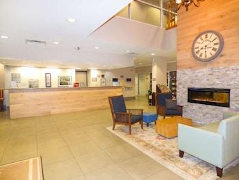 麗笙佛羅里達州奧蘭多鄉村套房飯店 Country Inn & Suites by Radisson, Orlando, FL