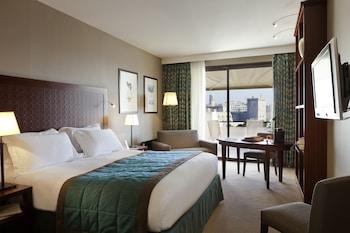 Luxury Tek Büyük Yataklı Oda, 1 Çift Kişilik Yatak, Manzara (fitness And Sofitel Spa)