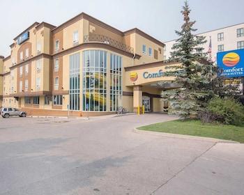 Hotel - Comfort Inn & Suites University