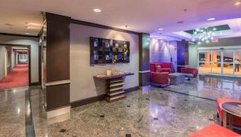 Hotel - Holiday Inn Express Dallas-North Tollway (N Plano)