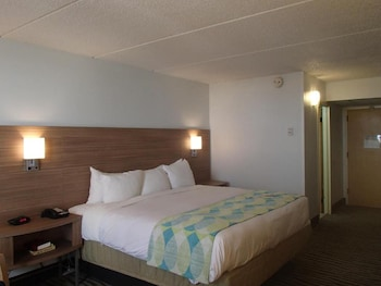 Premium Room, 1 King Bed, Accessible, Bay View (NonSmoking)