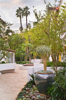 Sunset Marquis - Property Grounds  - #0
