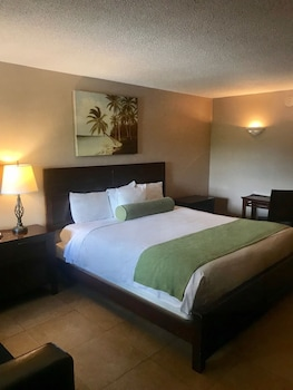 Deluxe Room, 1 King Bed, Refrigerator & Microwave