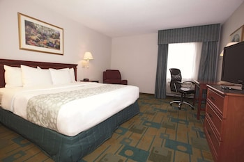 Room, 1 King Bed, Non Smoking (Pet-Friendly)