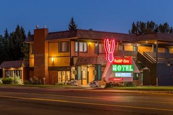 兔耳汽車旅館 Rabbit Ears Motel