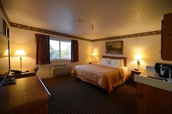 Standard Room, 1 King Bed, Kitchenette