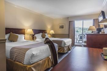 Standard Tek Büyük Yataklı Oda, 2 Çift Kişilik Yatak