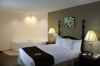 Standard Room, 1 Double Bed, Accessible, Non Smoking (Walk-in Shower)