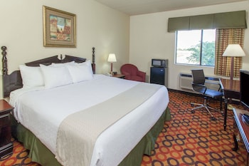 Room, 1 King Bed with Sofa bed, Non Smoking (Walk-In Shower)