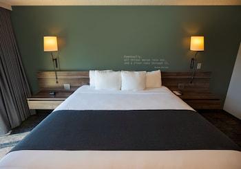 Room, 1 King Bed, Poolside