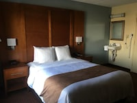 Room, Accessible, Non Smoking (Roll-in Shower) at Quality Inn near Baltimore in Catonsville