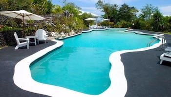 Hotel - Jamaica Palace Hotel