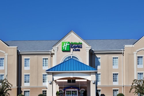 . Holiday Inn Express Hotel & Suites Orangeburg, an IHG Hotel