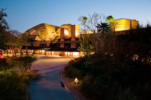Disney's Animal Kingdom Lodge image 48