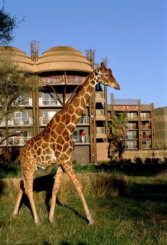 Disney's Animal Kingdom Lodge image 50