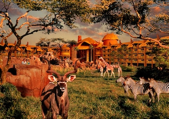 Hotel - Disney's Animal Kingdom Lodge