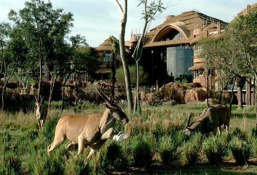 Disney's Animal Kingdom Lodge image 49