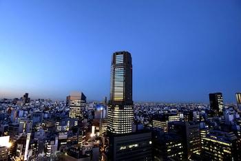 Hotel - Cerulean Tower Tokyu Hotel