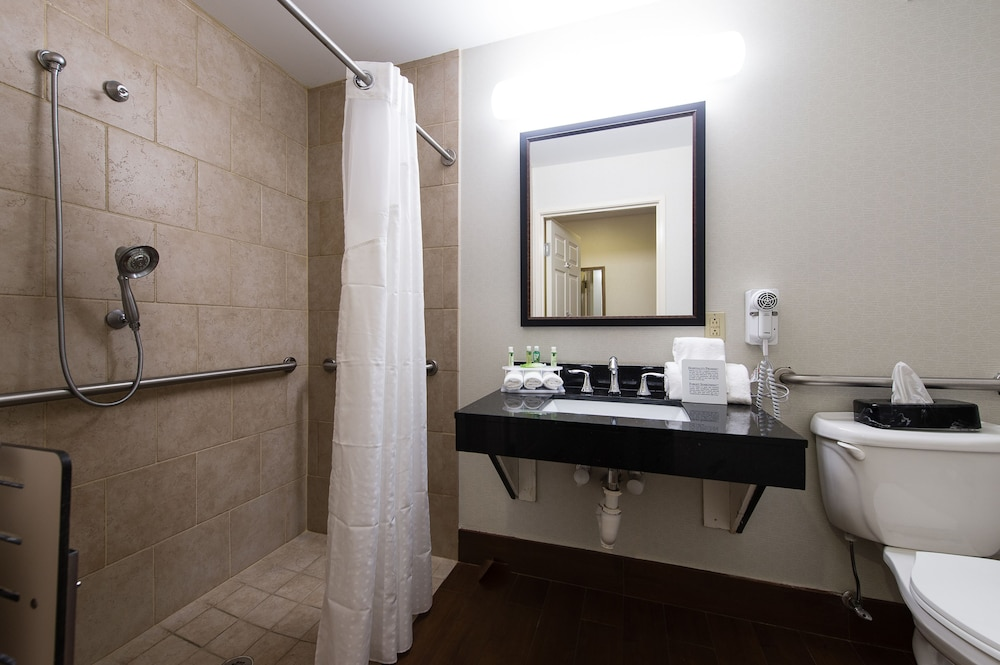 Suite : Suite, Accessible (Roll-In Shower) 10 of 86