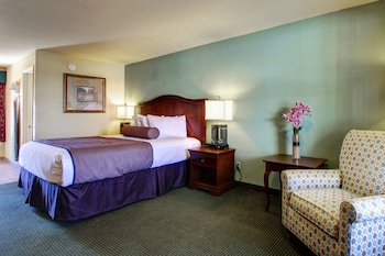 Standard Suite, 1 King Bed