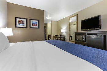 Standard Room, 1 King Bed, Roll-in Shower, Accessible, Non-Smoking