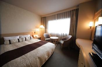 富士山側ダブルルーム禁煙|17㎡|沼津リバーサイドホテル