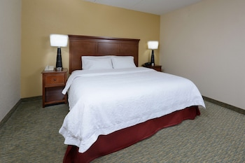 Room, 1 King Bed, Accessible, Bathtub (Non-smoking)