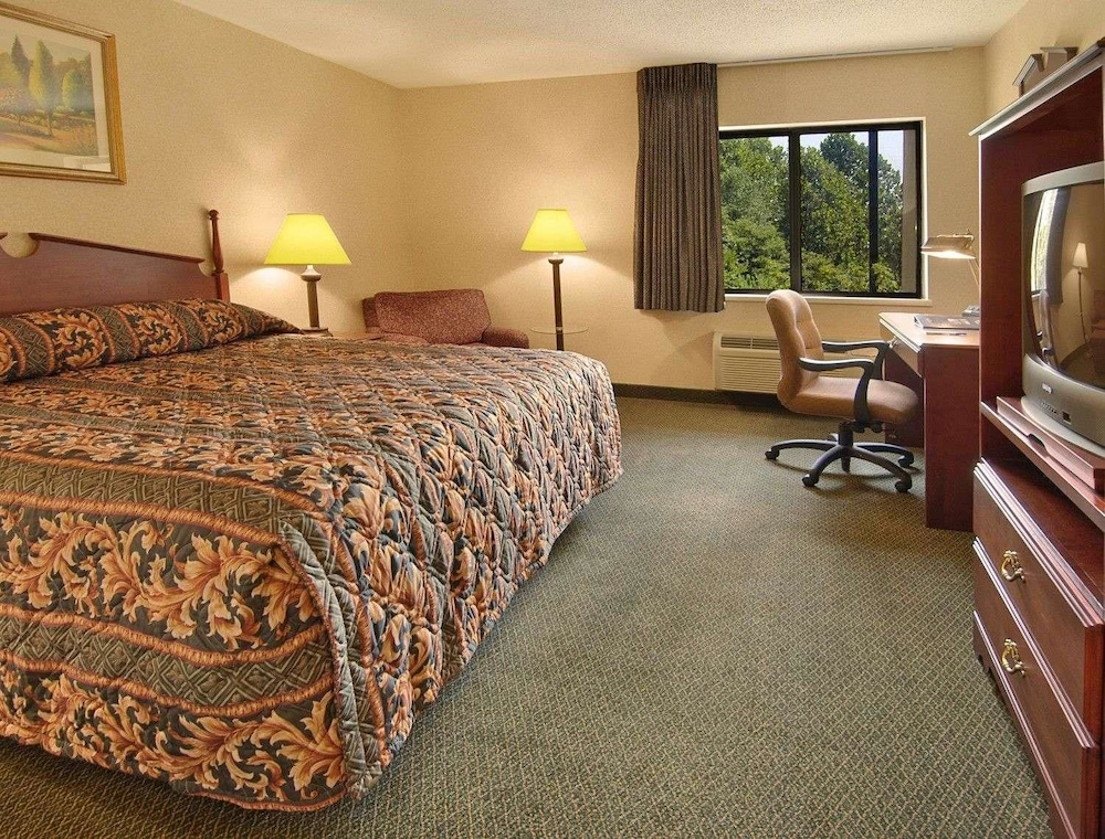 Suite : Suite, 1 King Bed 1 of 15