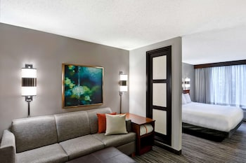 Guest Room, Room, 1 King Bed