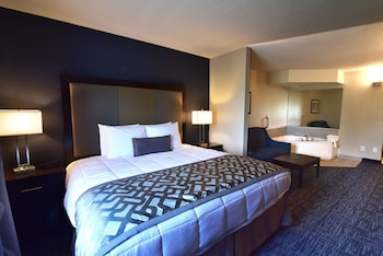 Best Western Plus Flint Airport Inn & Suites - Guestroom  - #0