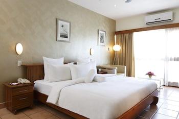 Room Bacchus
