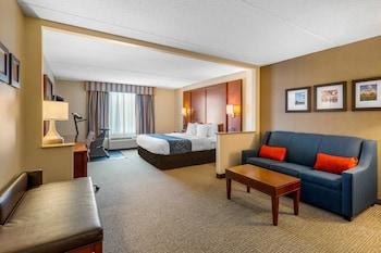 Hotel - Comfort Suites Manassas Battlefield Park